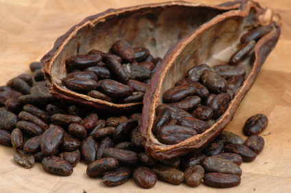 raw cacao (chocolate) beans